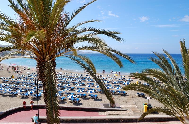 Overwinteren in Spanje op het strand van Tenerife