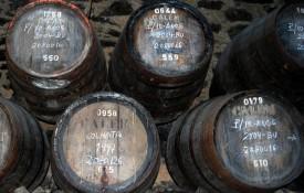 De wijnkelders van Porto