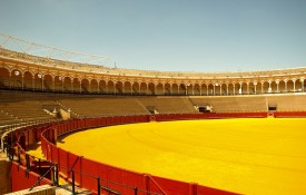 De arena Plaza de Toros