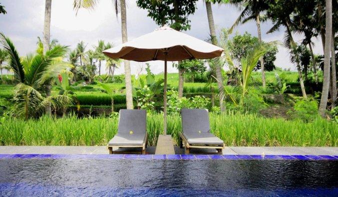 Sapulidi Resort Spa & Gallery - Zonneterras