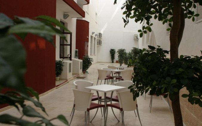 Terras van hotel Milord's Suites in Alicante