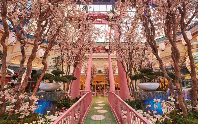 Hotel - - Bellagio