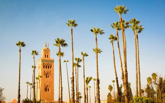 Marrakech - Koutoubia