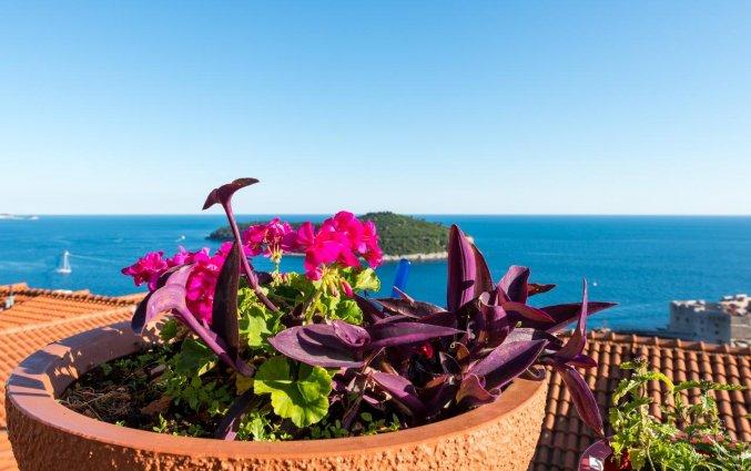 Uitzicht van Guesthouse Home Sweet Home in Dubrovnik
