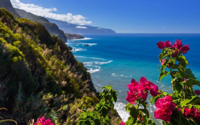 Madeira - Uitzicht met bloem
