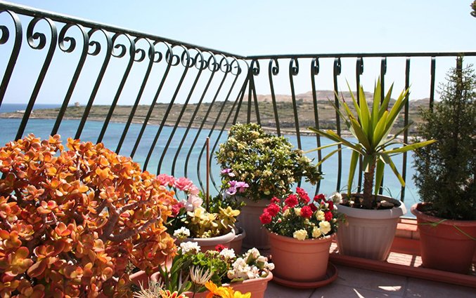 Balkon accommodatie White Dolphin Holiday Complex op Malta