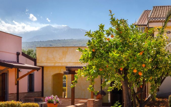 Tuin van Hotel La Terra dei Sogni op Sicilie