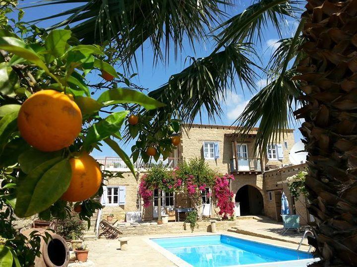Zwembad en terras van Appartementen Cyprus Village