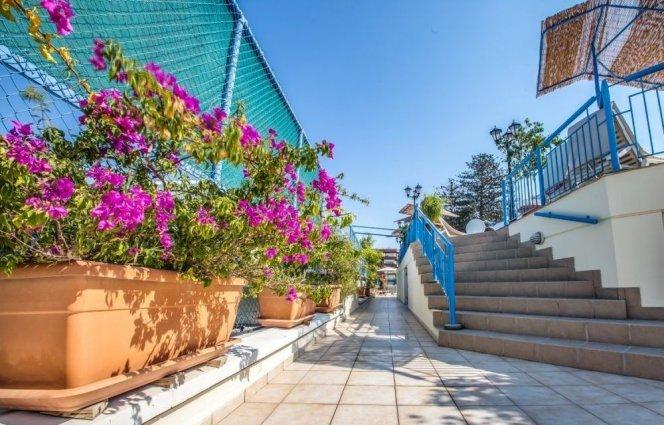 Tuin op het dak van Appartementen Atrium Zenon Larnaca Cyprus