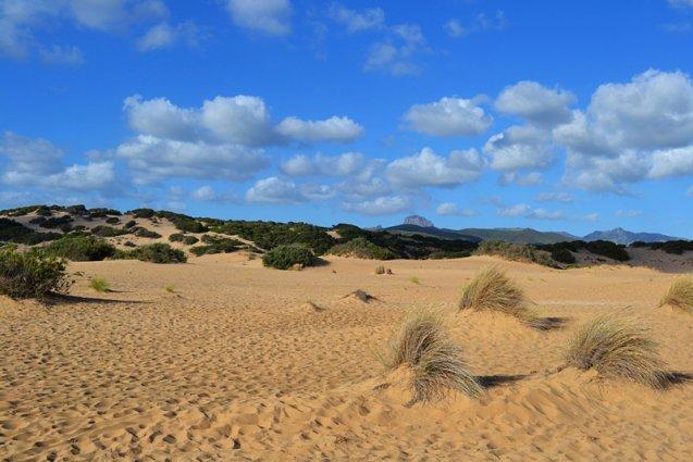 Sardinië - Duinen