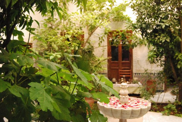 Binnentuin van Riad Ben Youssef