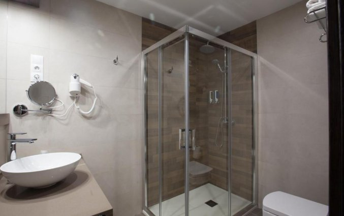 Badkamer van een tweepersoonkamer van Hotel Don Paco in Malaga