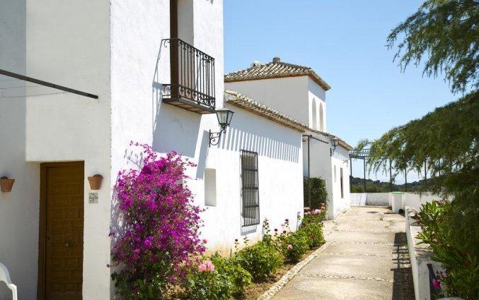 Complex van Hotel Villa de Priego de Córdoba in Andalusie