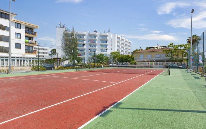 De tennisbaan van Hotel AluaSun Continental Park Mallorca