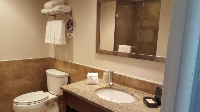 Badkamer van hotel Holiday Inn Long Island City New York