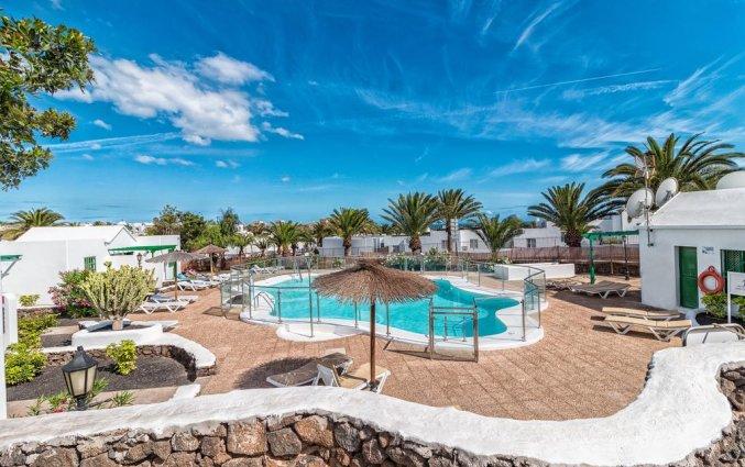 Zwembad van appartementen Las Gaviotas in Lanzarote